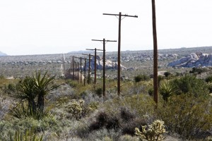 Endless miles of electricity poles @ Mojave National preserve